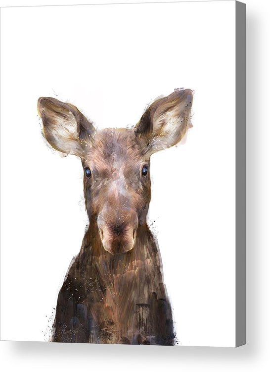 Moose Acrylic Print featuring the painting Little Moose by Amy Hamilton