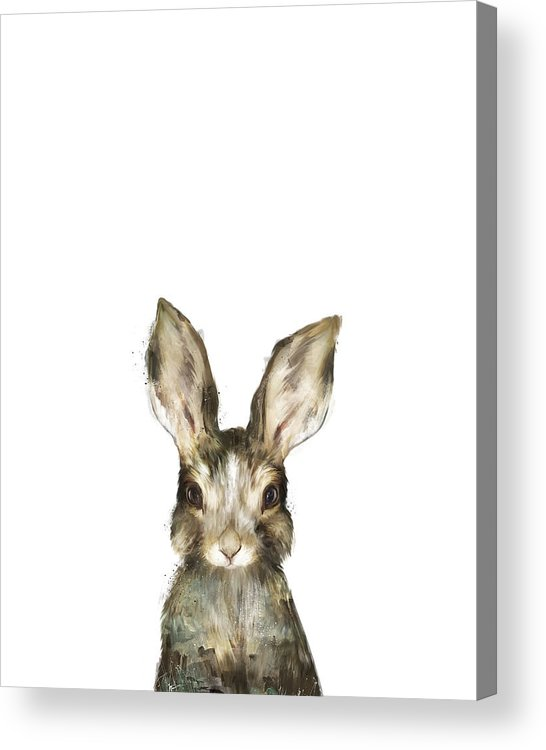 Rabbit Acrylic Print featuring the painting Little Rabbit by Amy Hamilton
