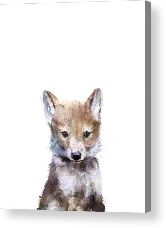 Wolf Acrylic Print featuring the painting Little Wolf by Amy Hamilton