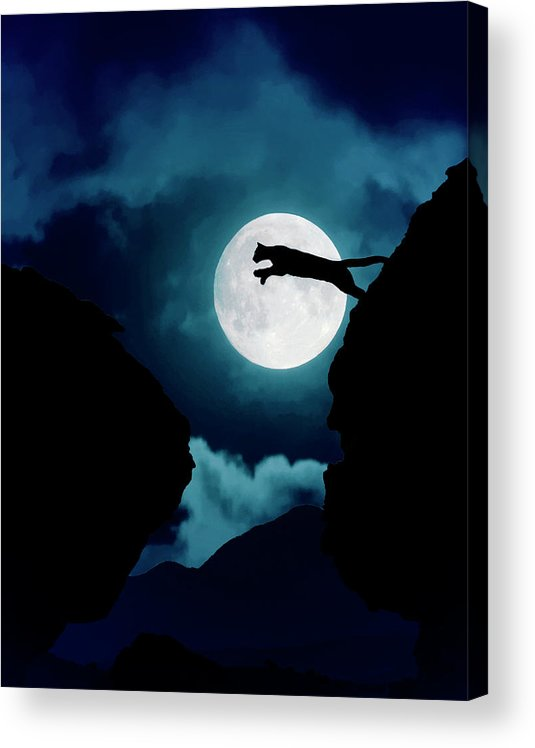 Mountain Lion Acrylic Print featuring the photograph Moonlight Leap by Roy Nierdieck