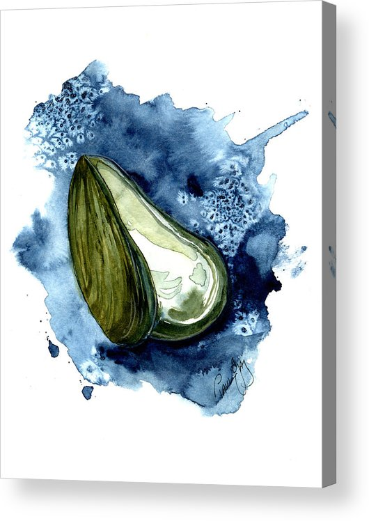 Mussell Acrylic Print featuring the painting Mussel Shell by Paul Gaj