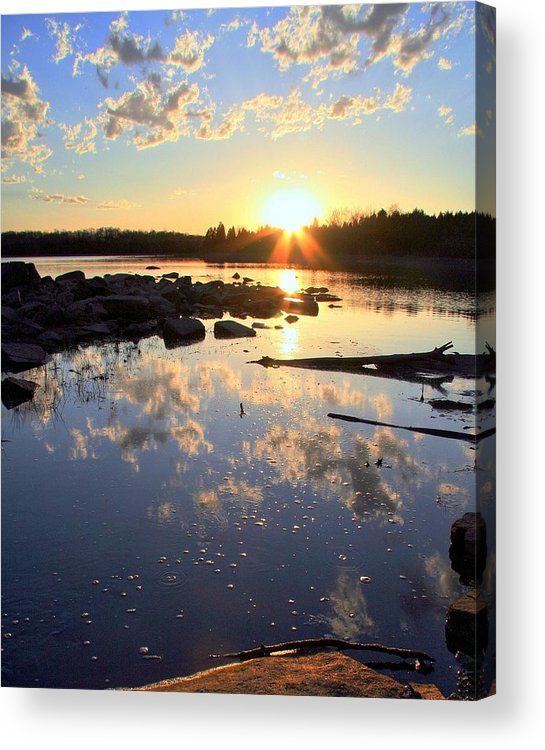 Lake Acrylic Print featuring the photograph Patience by Mitch Cat