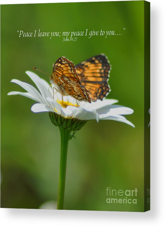 Diane Berry Acrylic Print featuring the photograph Peace I Leave You by Diane E Berry