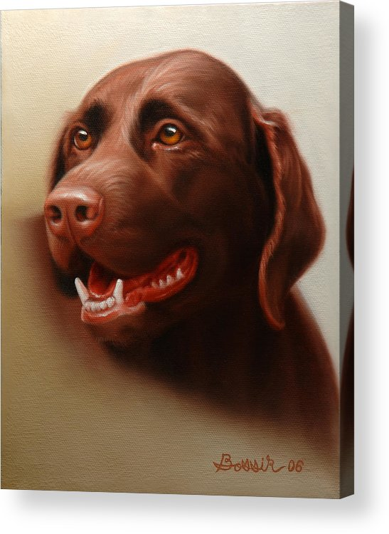 Chocolate Labrador Acrylic Print featuring the painting Pet Portrait of a Chocolate Labrador by Eric Bossik
