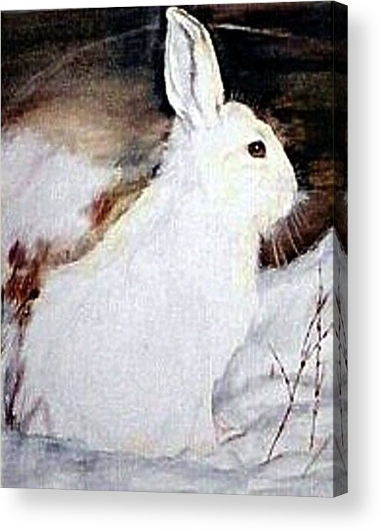 Snowshoe Hare Acrylic Print featuring the painting Snow Bunny by Debra Sandstrom