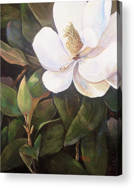 Floral Acrylic Print featuring the painting Southern Magnolia by Jimmie Trotter