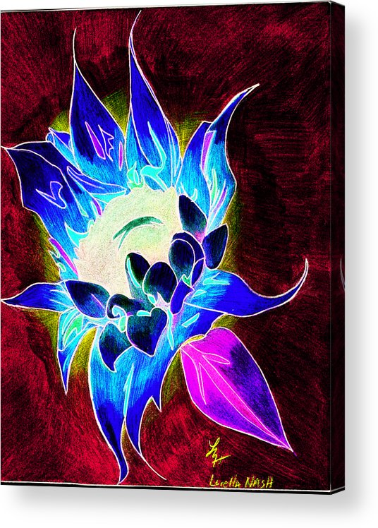 Sunflower Acrylic Print featuring the drawing Sunflower by Loretta Nash