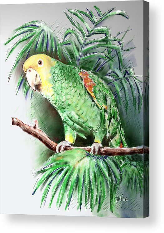 Bird Acrylic Print featuring the digital art Yellow-headed Amazon Parrot by Arline Wagner