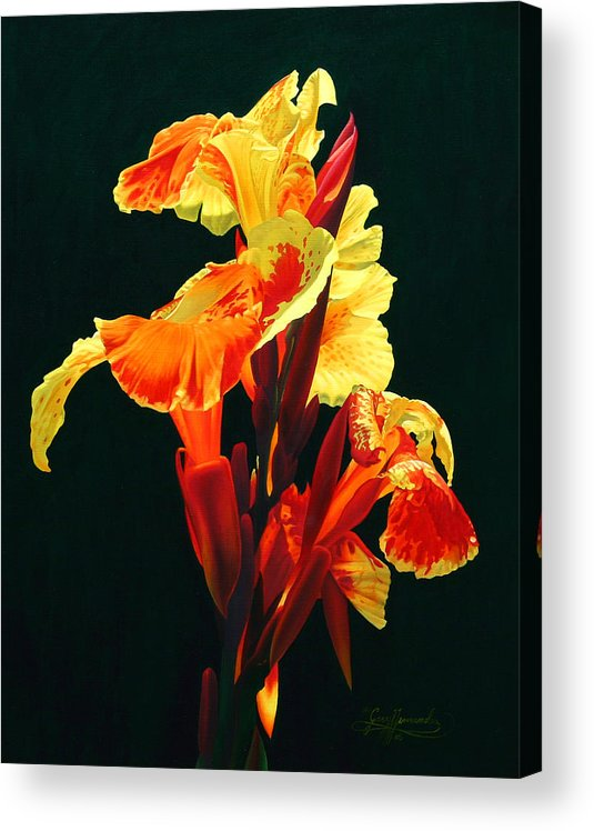 Flowers Acrylic Print featuring the painting Yellow Cannas by Gary Hernandez