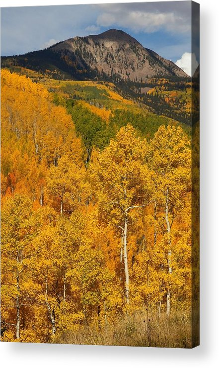 San Acrylic Print featuring the photograph San Juan Mountains In Autumn by Jetson Nguyen