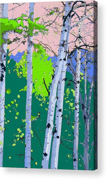 Landscape Acrylic Print featuring the photograph Aspensincolor Green by Robert J Sadler