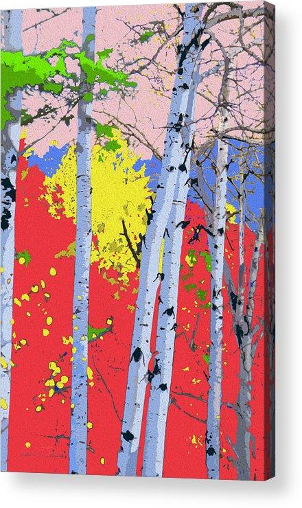 Landscape Acrylic Print featuring the photograph Aspensincolor Redorange by Robert J Sadler
