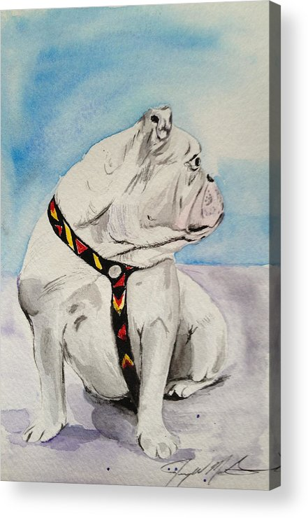Dog Acrylic Print featuring the painting Bulldog by Jeremy Martinson