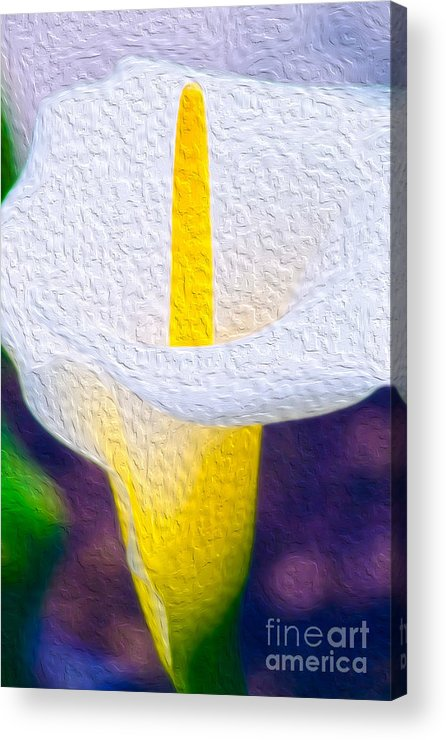 Vibrant Acrylic Print featuring the digital art Calla Lily Blossom I by Kenneth Montgomery