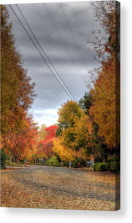Fall Acrylic Print featuring the photograph Fall Drive by Ren Alber
