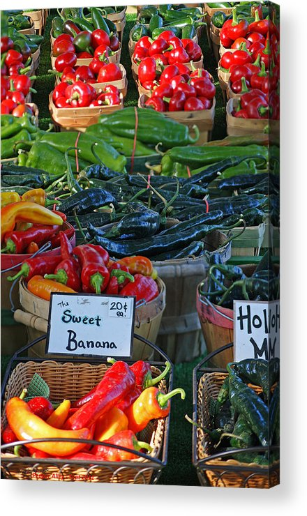 Pepper Acrylic Print featuring the photograph Pepper Alley by Steph Maxson
