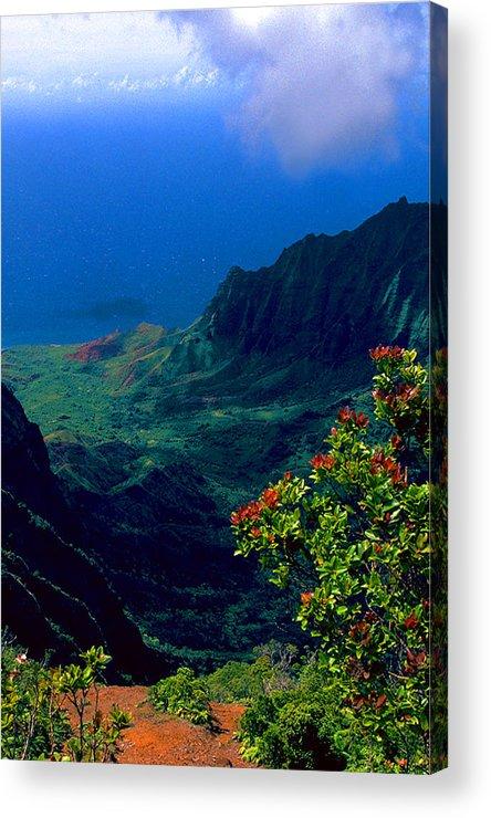 Hawaiian Cliffs Acrylic Print featuring the photograph Hawaiian Cliffs by Ron Regalado