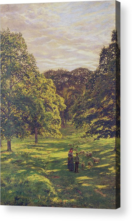 Woods; Shadows; Trees Acrylic Print featuring the painting Meadow Scene by John William Buxton Knight
