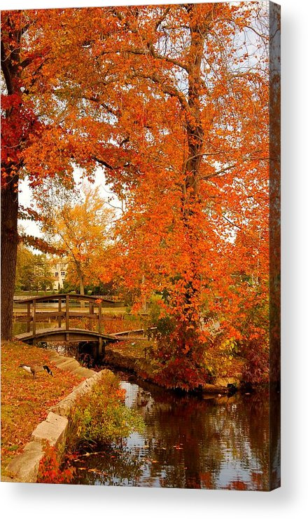 New Jersey Acrylic Print featuring the photograph A Morning In Autumn - Lake Carasaljo by Angie Tirado