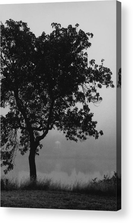 Black Acrylic Print featuring the painting Black Elm by Arnold Isbister