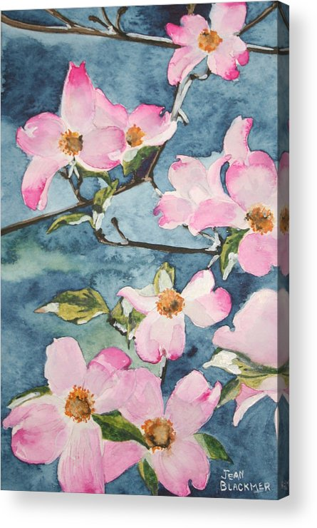 Flowers Acrylic Print featuring the painting Blushing Prettily by Jean Blackmer