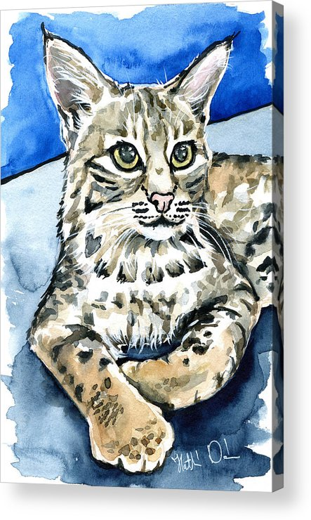 Cat Acrylic Print featuring the photograph Bobcat Portrait by Dora Hathazi Mendes