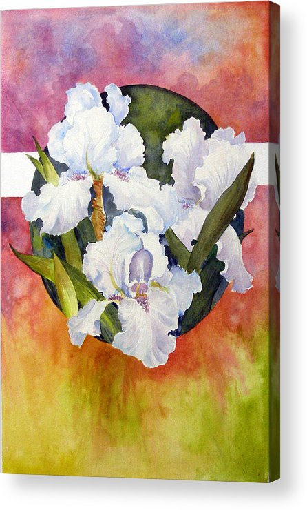 Watercolor;iris;floral;contemporary Floral;white Iris; Acrylic Print featuring the painting Circle Of Irises by Lois Mountz