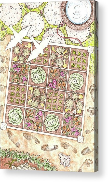 Gardening Acrylic Print featuring the drawing Gardening By The Foot by Jennifer Harper