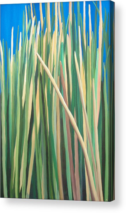 Grass Acrylic Print featuring the painting Ire-land by Amanda Jordan