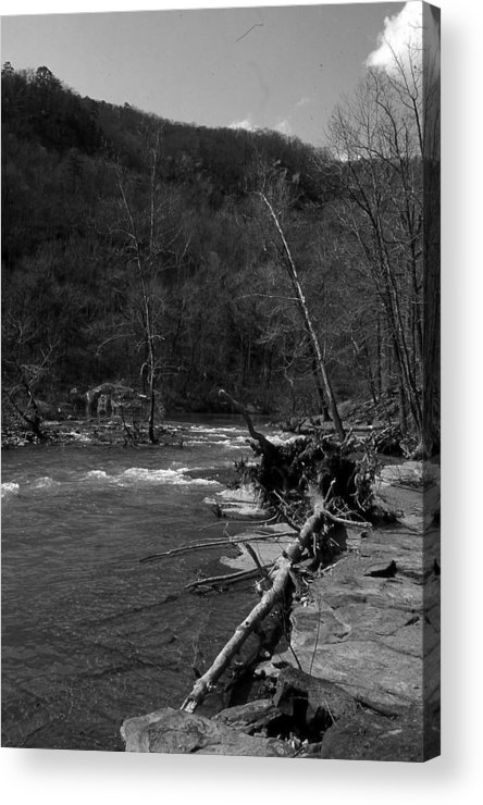 Acrylic Print featuring the photograph Long-pool-log-jam by Curtis J Neeley Jr