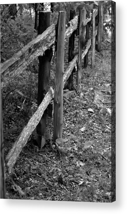 Ansel Adams Acrylic Print featuring the photograph Momvisitfence-carterlane by Curtis J Neeley Jr
