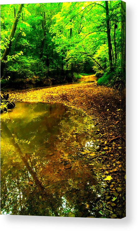 Streambed Acrylic Print featuring the photograph One Road Out by Jeff Kurtz