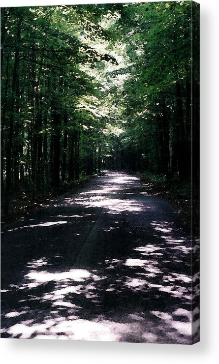 Forest Acrylic Print featuring the photograph Sun And Shadow Road In Summer Imp Wc by Lyle Crump