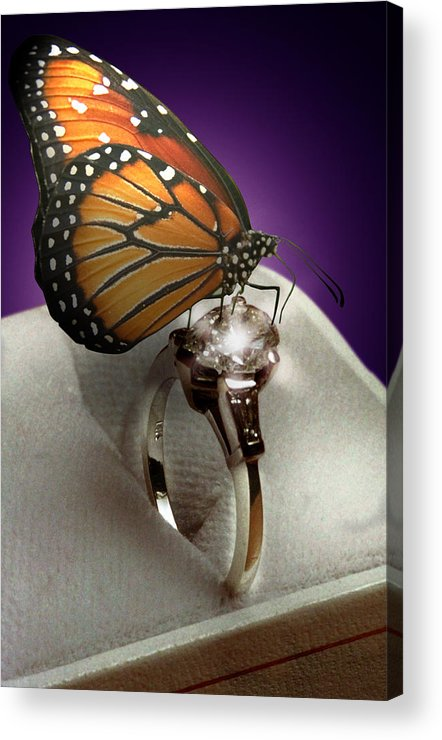 Fantasy Acrylic Print featuring the photograph The Butterfly And The Engagement Ring by Yuri Lev