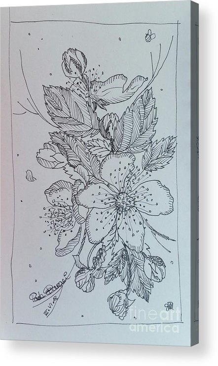 Acrylic Print featuring the drawing Peach Flowers by Paola Baroni