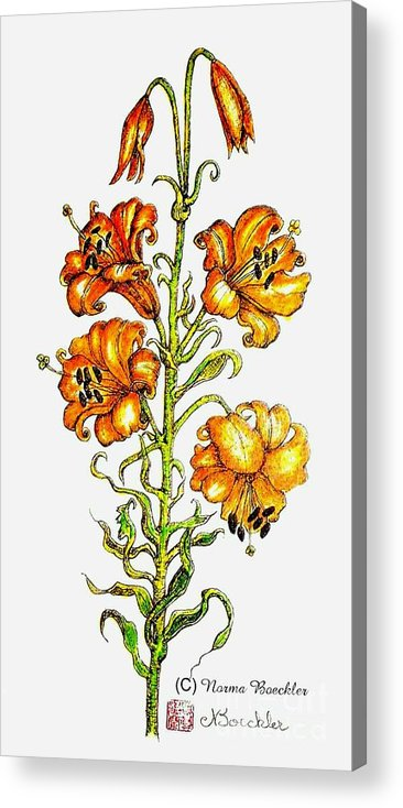 Orange Flowers Acrylic Print featuring the painting Orange Lilies by Norma Boeckler