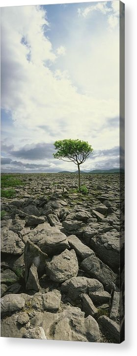 Burren Acrylic Print featuring the photograph The Burren, On Kinvara Side, Co Clare by The Irish Image Collection
