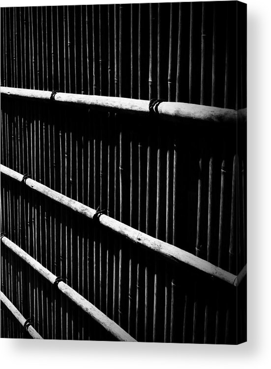 Bamboo Acrylic Print featuring the photograph Bamboo Screen by Claire Carpenter