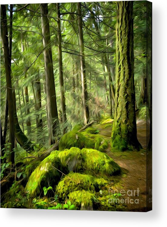 Rainforest Acrylic Print featuring the digital art Enchanted Forest by Ty Korte