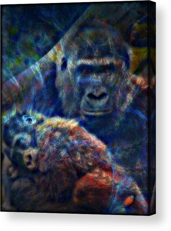 Gorilla Acrylic Print featuring the mixed media Gorillas In The Mist by Wendie Busig-Kohn