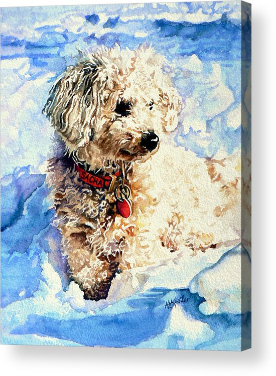 Dog Portrait Acrylic Print featuring the painting Sacha by Hanne Lore Koehler