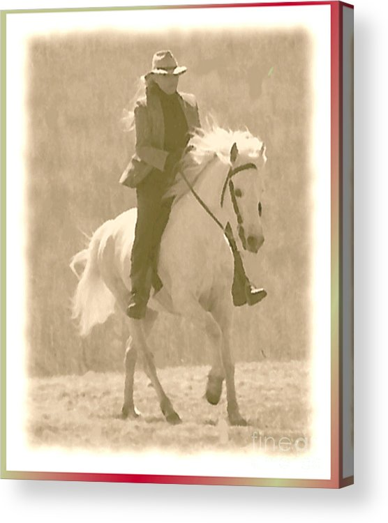 Horse Acrylic Print featuring the photograph Stallion Strides by Patricia Keller