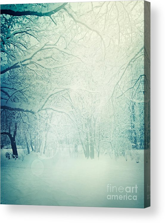 Cold Acrylic Print featuring the photograph Winter Trees by Mythja Photography