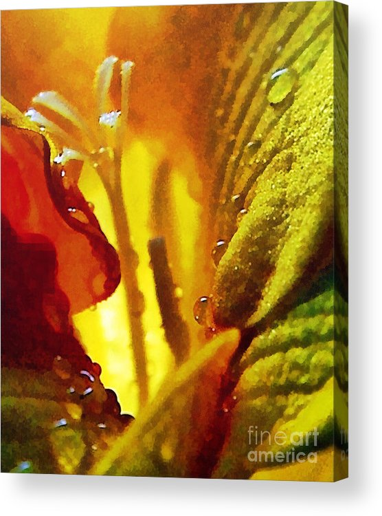 Odon Acrylic Print featuring the painting The Pistils by Odon Czintos