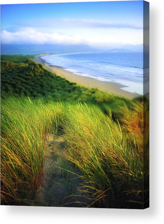 Blue Sky Acrylic Print featuring the photograph Co Kerry, Castlegregory Sandunes by The Irish Image Collection