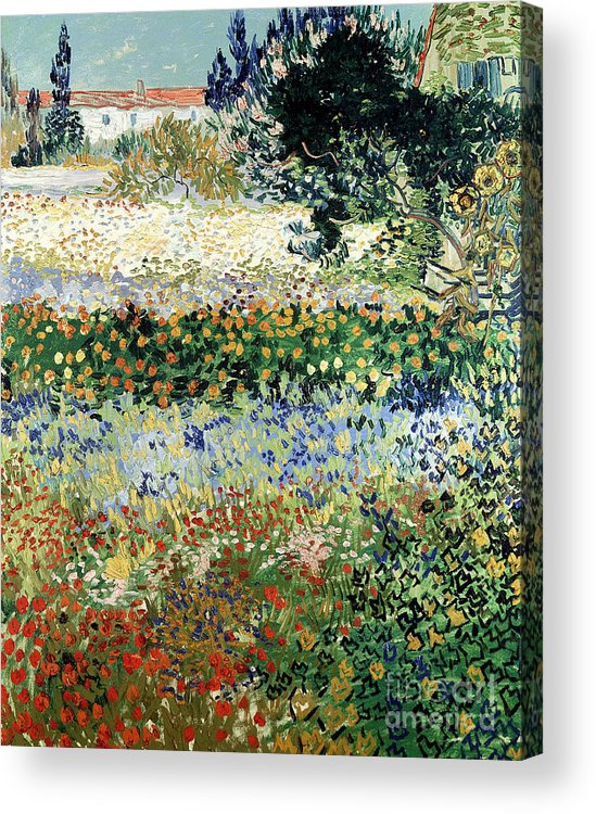 Garden In Bloom Acrylic Print featuring the painting Garden In Bloom by Vincent Van Gogh