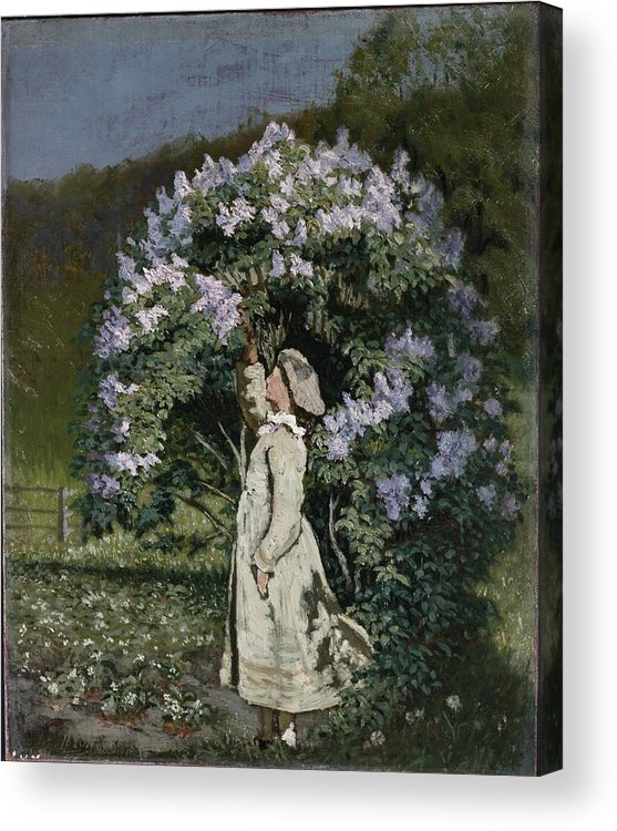 Ovr371683 Acrylic Print featuring the photograph The Lilac Bush by Olaf Isaachsen