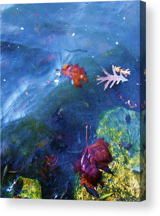 Abstract Water And Fall Leaves Acrylic Print featuring the photograph Abstract-10 by Todd Sherlock