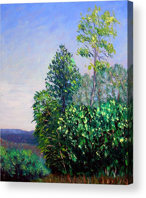 Original Oil On Canvas Acrylic Print featuring the painting Bcsp 5-29 by Stan Hamilton