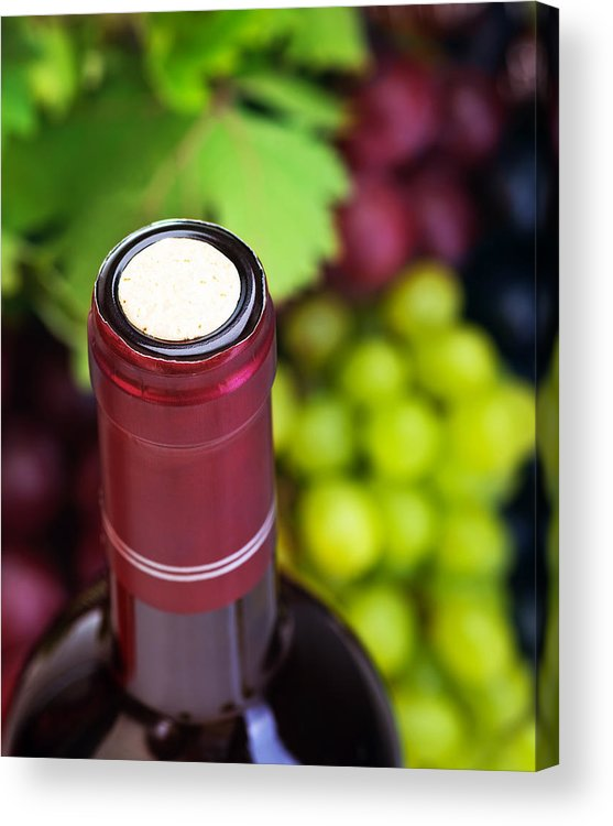 Depth Of Field Acrylic Print featuring the photograph Cork Of Wine Bottle by Anna Om